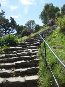 smm path