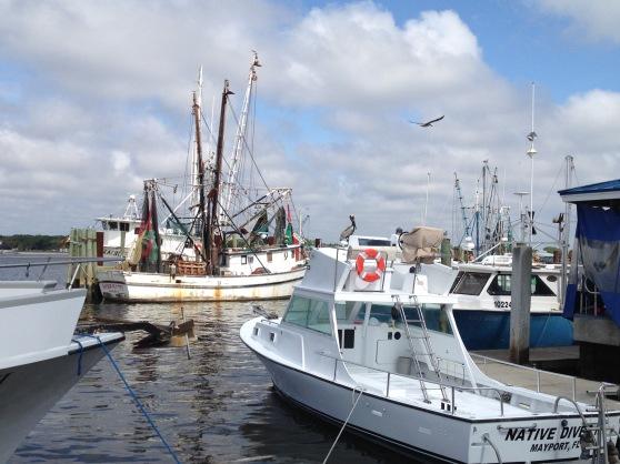 shrimp boats.jpg