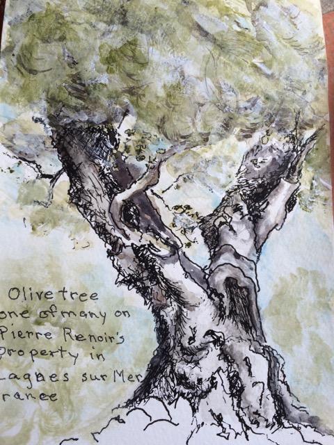 olive tree:DB.jpeg