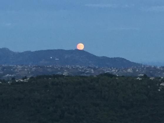 tish moon.JPG